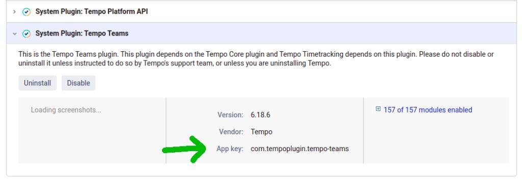 App key in Tempo
